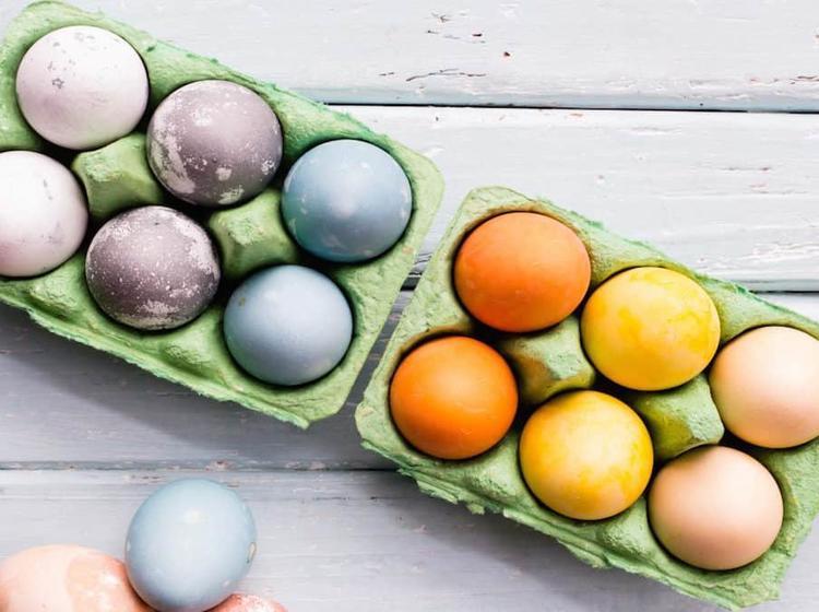Natürliche Eierfarbe